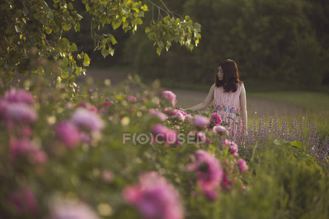 Girl in pink dress looking at flowers — Stock Photo