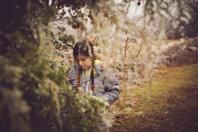 Девушка с камерой в осеннем парке — стоковое фото