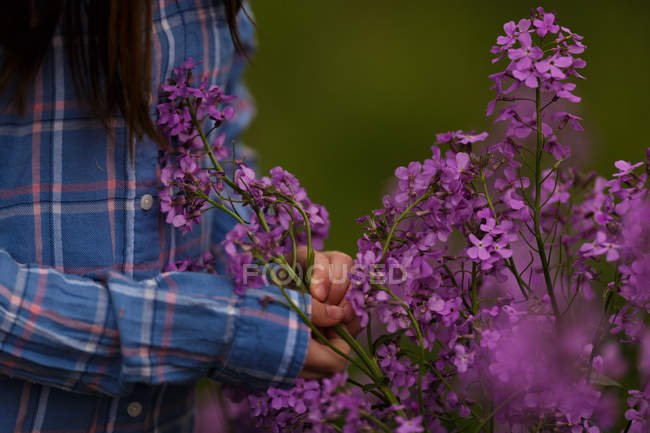 Female hands touching lilacs — Stock Photo
