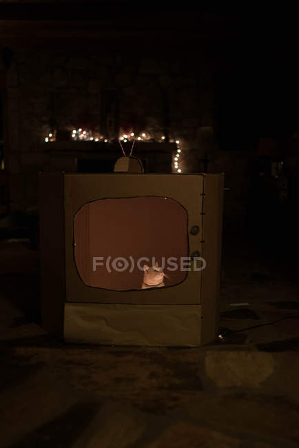 Gato dentro engraçado conjunto de tv de papelão — Fotografia de Stock
