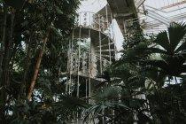 Escalera circular vintage en el jardín de Kew, Londres - foto de stock