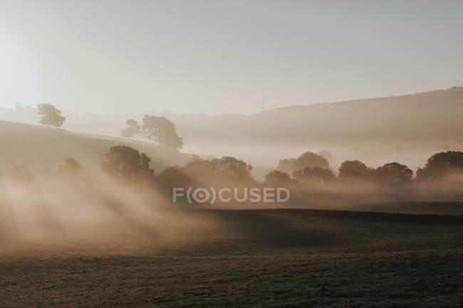Manhã enevoada no campo — Fotografia de Stock