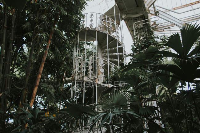 Escalier circulaire vintage à Kew Garden, Londres — Photo de stock