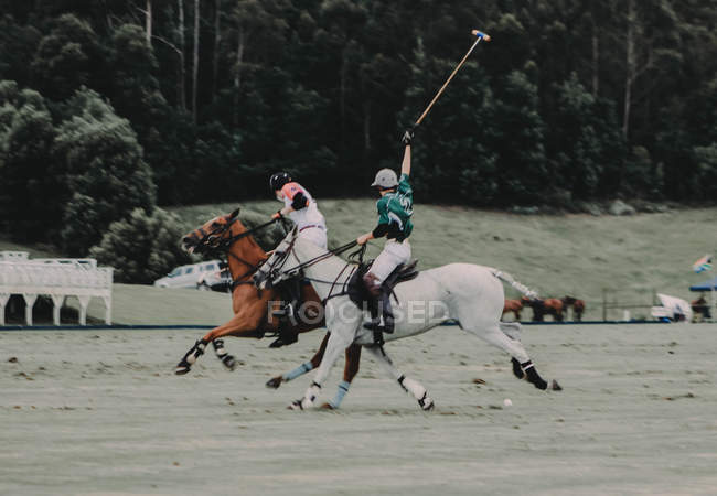 Polo players at match — Stock Photo