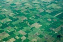 Kleingärten, vereinigte Staaten — Stockfoto