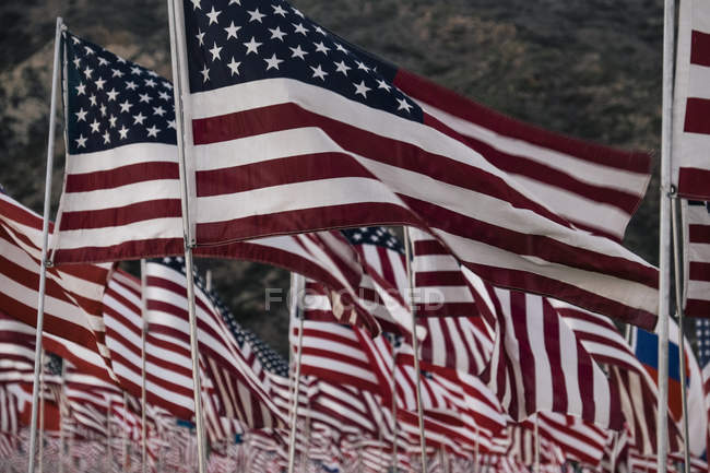 Розмахуючи американськими прапорами — стокове фото