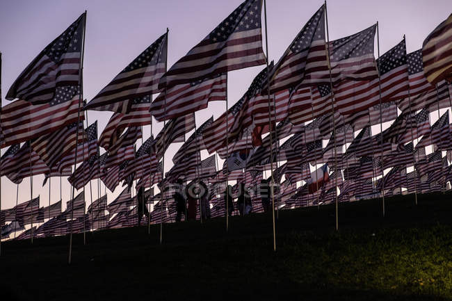 Sventolando bandiere americane — Foto stock