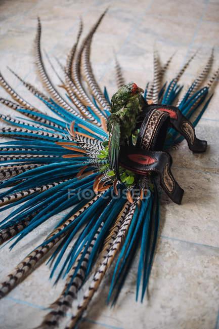 Traditional conchera dancer headdress — Stock Photo