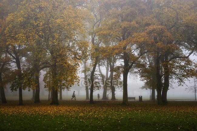 Parque de prados em Edimburgo — Fotografia de Stock