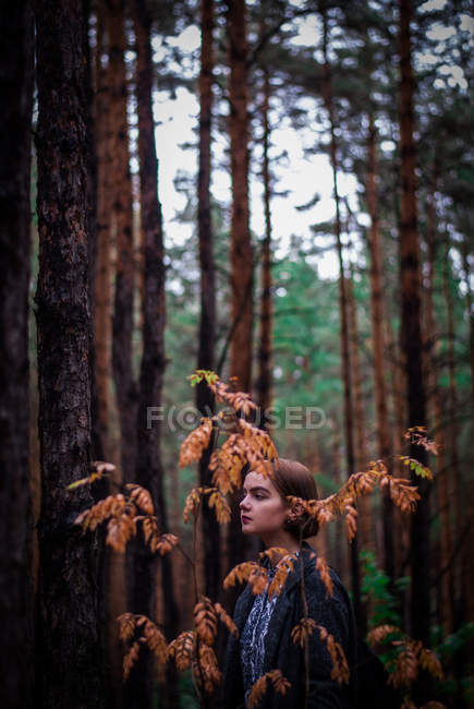 Young girl in forest — Stock Photo