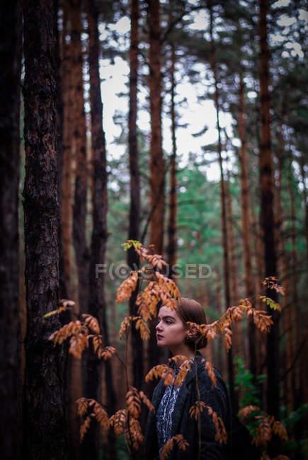 Junges Mädchen im Wald — Stockfoto