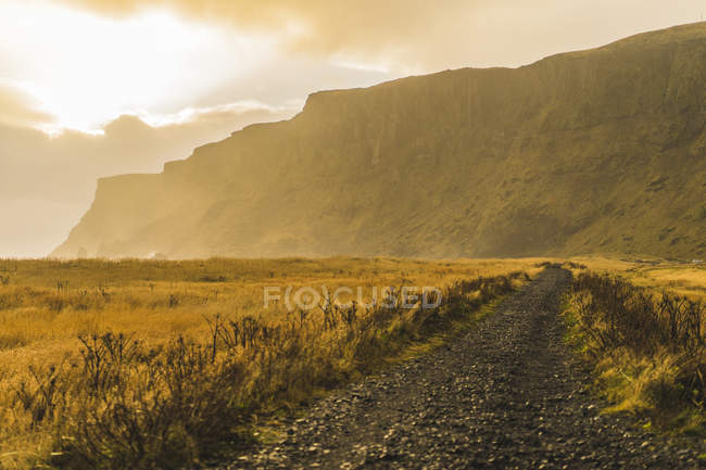 Rocky mountain on background and field on foreground in Vik, Iceland, Europe — Stock Photo