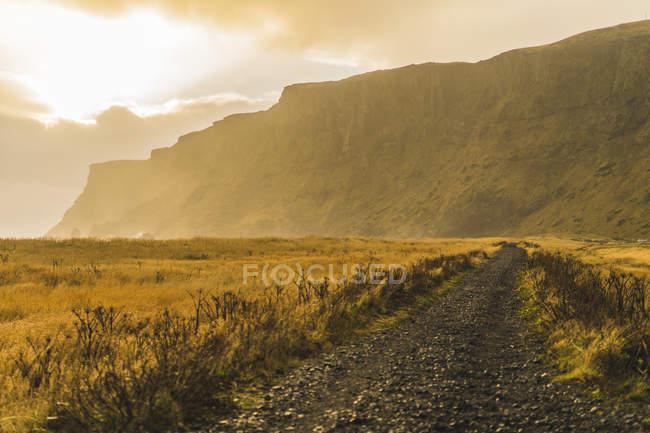 Montagna rocciosa su fondo e campo primo piano in Vik, Islanda, Europa — Foto stock