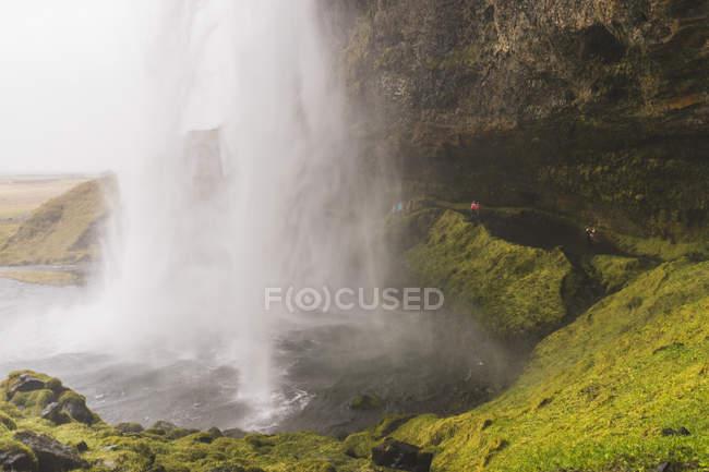 Водопад Селйяландсфосс и травы на камни в южном регионе, Исландия — стоковое фото