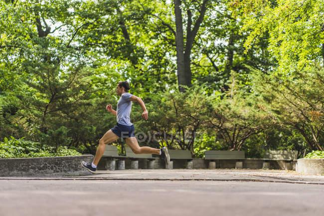 Athletic man running through park, Montreal, Quebec, Canada — Stock Photo