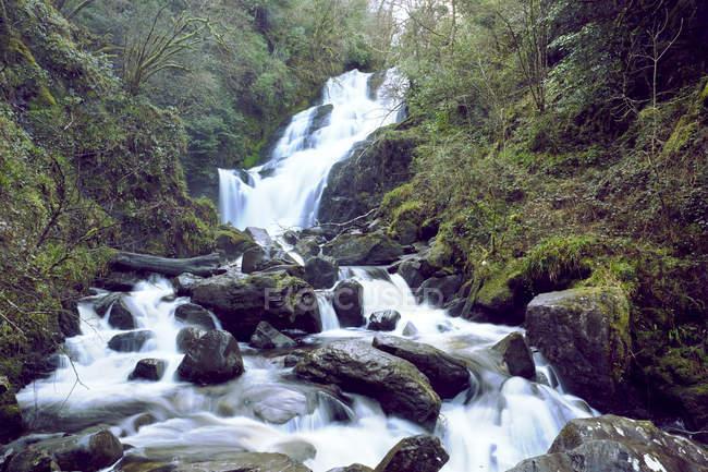 Шейная гривна водопад в Европе Национальный парк Килларни, графство Керри, Ирландия — стоковое фото