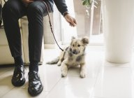 Man sitting with dog in apartment — Stock Photo
