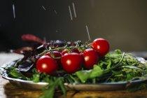 Grappolo di pomodorini e rucola — Foto stock