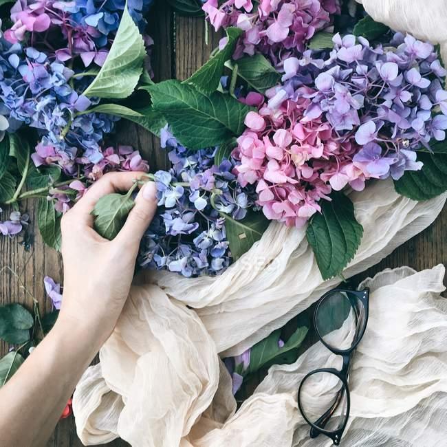 Женская рука трогает цветки флокса — стоковое фото