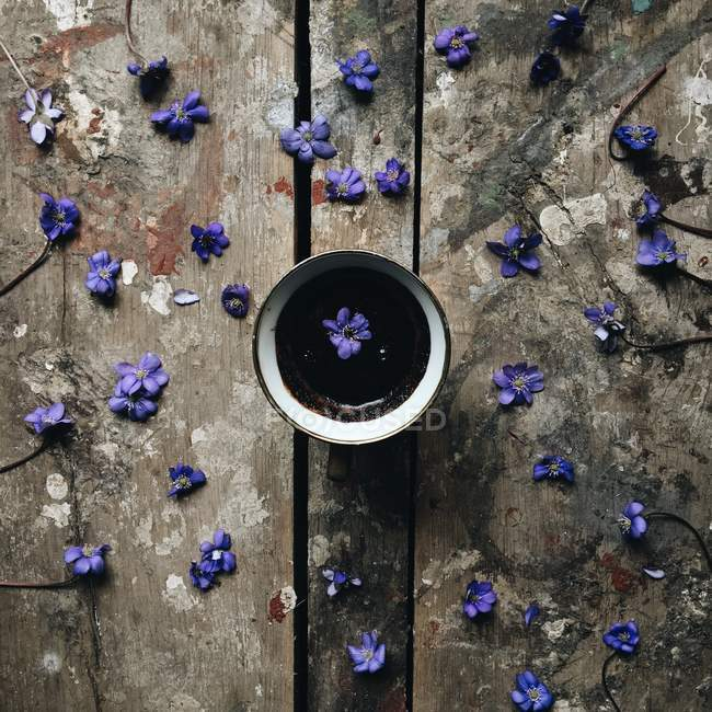 Cup of coffee with fresh violet flowers — Stock Photo