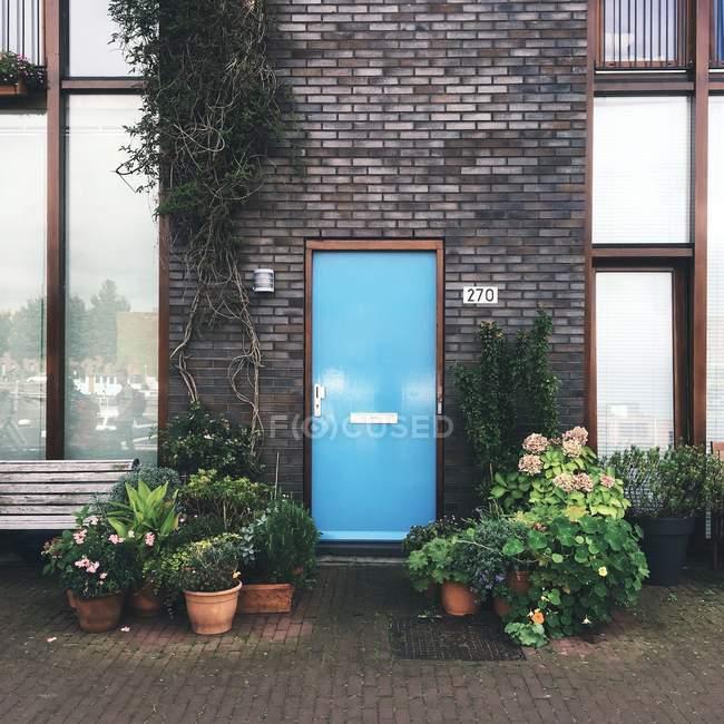 Blue door on brick wall — Stock Photo