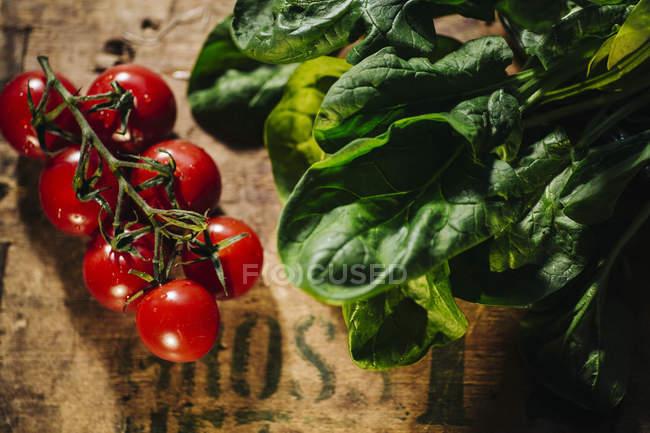 Tomates cherry y hierbas frescas - foto de stock