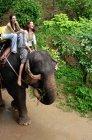 Women riding on elephant — Stock Photo
