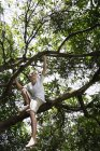 Young boy on tree — Stock Photo
