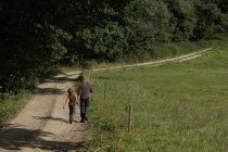 Батько і син, який йшов по дорозі — стокове фото