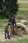 Father and son hoeing hay — Stock Photo