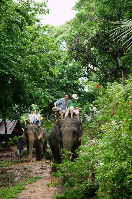 Due coppie di turisti a cavallo su due elefanti — Foto stock