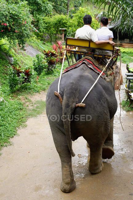 Paar auf Elefanten reiten — Stockfoto
