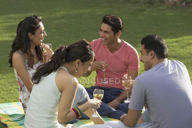 Amigos en el picnic, beber vino - foto de stock
