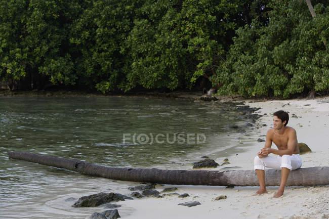 Людина, що сидить на зрубане пальмових дерев — стокове фото