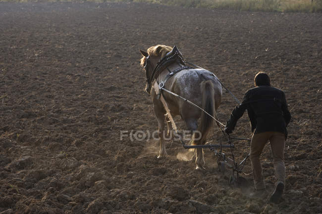 Man with horse-drawn plow — Stock Photo