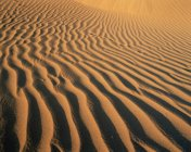 Observing view of ripples in sand in desert — Stock Photo