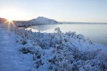Спостерігаючи видом на Pingvallavatn озеро — стокове фото