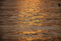 Спокойная вода, отражающая свет Сумерки — стоковое фото