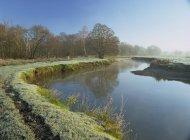 Река Wey в Грозовую Meadows — стоковое фото