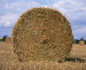 Straw bale in field in Nottinghamshire — Stock Photo