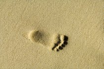 Child footprint on beach — Stock Photo