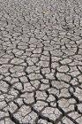 Rissige Flussbett bei Trockenheit — Stockfoto