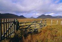 Спостерігаючи вид на поле і паркан — стокове фото