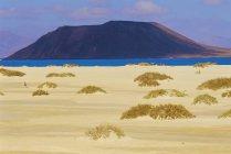 Песчаные дюны и Исла-де-Лос Лобос — стоковое фото