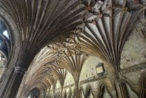 View on ceiling of Canterbury Cathedral — Stock Photo
