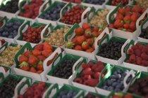 Obst und Beeren in Eimern — Stockfoto