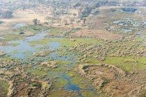 Veduta aerea del delta dell'okavango — Foto stock