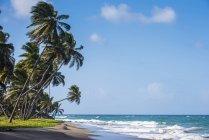 Strand von Sauteurs in Grenada — Stockfoto