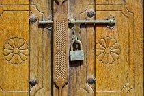 Detail der Tür und Schloss — Stockfoto