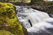 Мшиста рок і водоспад — стокове фото